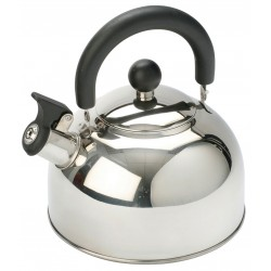 2L Stainless Steel kettle with folding handle Silver - 2016