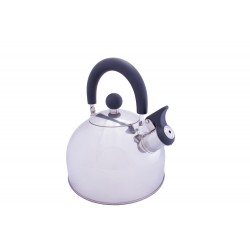 2L Stainless Steel kettle with folding handle - 2019